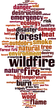 Wildfire_blog_image.png